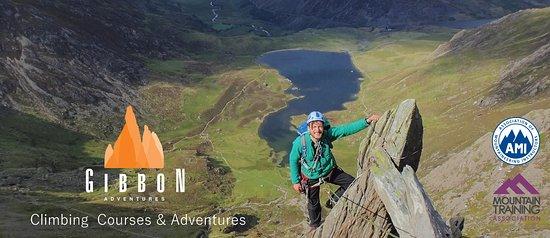 gibbon adventures