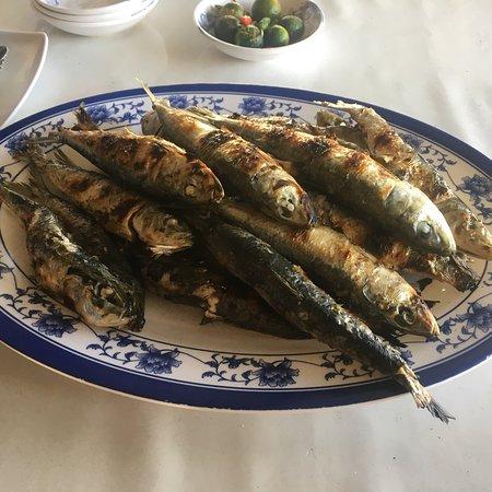 Daet, Филиппины: Mercedes fish port and paluto