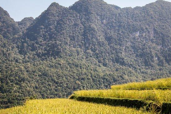 Pu Long Valley