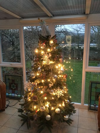 Christmas in the conservatory