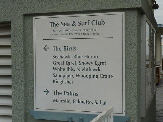 Marriott's SurfWatch
