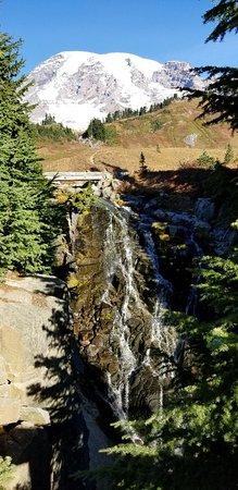 Mount Rainier National Park, WA: Skyline Trail