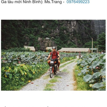 Motor for rent very cheap and good. The lady ( Ms Trang) very friendly and helpful