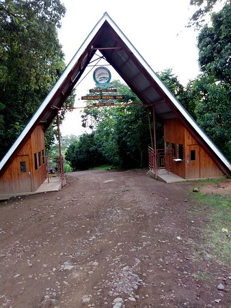 Kili Taxi Services: Kilimanjaro gates, Mweka gate