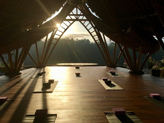 Morning yoga!