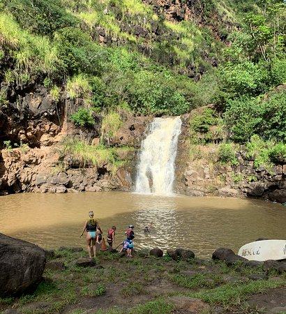 Ultimate Circle Island Adventure with Waimea Waterfall: Oahu Nature Tour