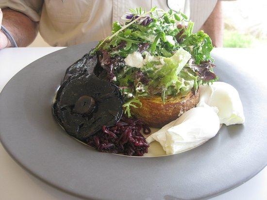 The mushrooms and poached eggs on multigrain toast.