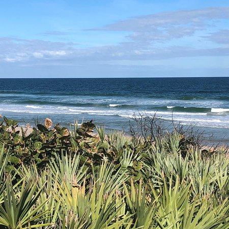 Florida Photo