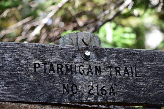 Ptarmigan Trail.