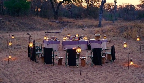 Londolozi Private Game Reserve, África do Sul: A private evening safari drive dinner in the open.