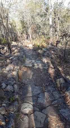 Mount Baldy Photo