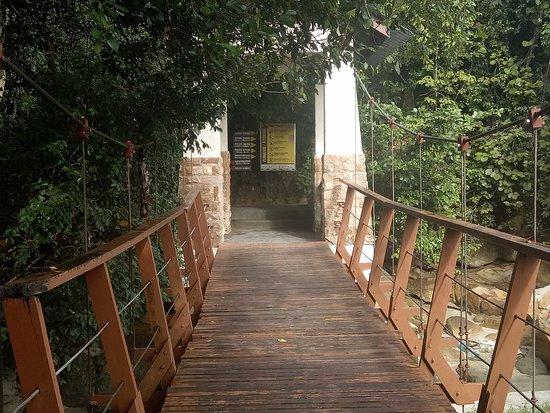 bridge near entrance of trail