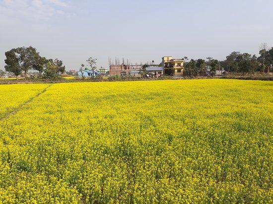 Chitwan District Foto