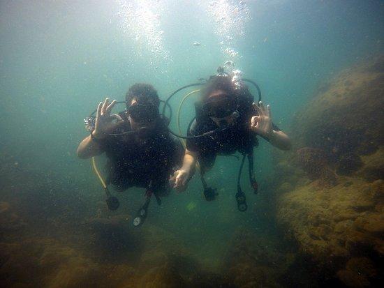 Viet Diving Photo