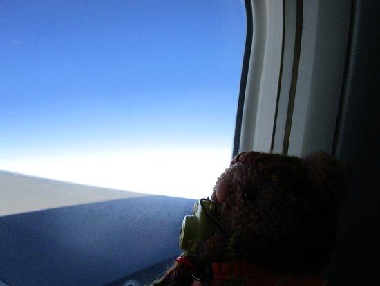 Aomori Prefecture, اليابان: We always get the window seat! 📸 窓側の席を確保しましたYO!