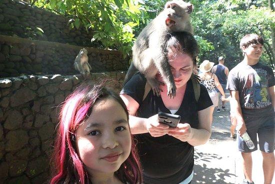 """Marina Bali Tour: """"Ubud Monkey Forest"""" feeding the monkey."""