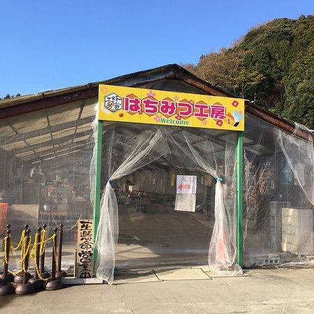 Kimitsu Photo