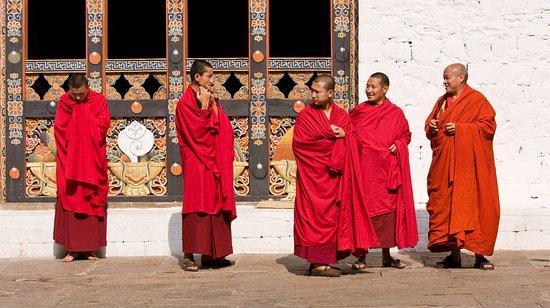 Monks at punakha dzong.
