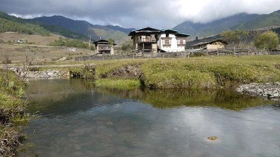 Thimphu District, Bhutan: Phobjikha valley.Valley of black necked crane