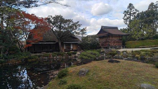 Fotografia de Nara