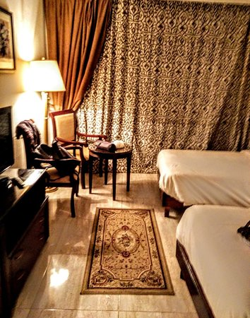 Pyramisa Hotel Luxor : Room on the fifth floor in the main building. Behind curtains : balcony with view on Nile, garden and 2 pools. In the room: 2 single beds,mini fridge and satellite tv. Of course also a bath room.