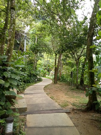 Pristine and well designed trail around lake