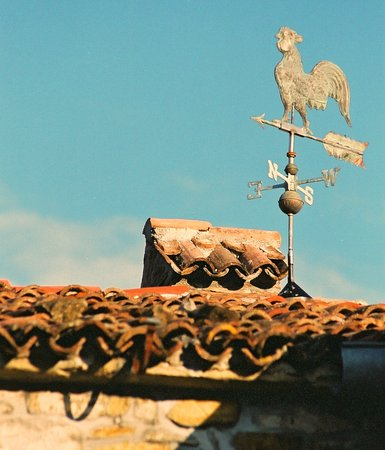 Istria region. Full of stories about winds, stone and delicious wine.