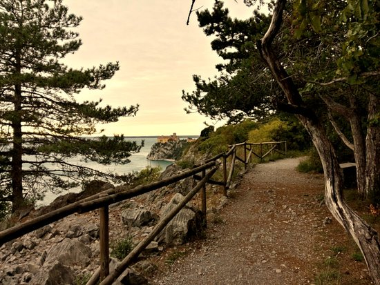 Active Adriatic: Wandering on the edges. This biking & hiking trail leads to cliffs of the Adriatic, named Strunjan cliff. Smell of salty sea and pine forest is simply the best medicine to fill your lungs with!