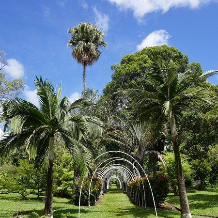 Ruheoase mit fantastischer Vegetation