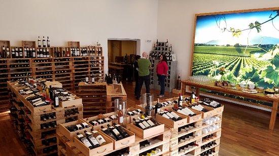 Brindisi Vinhos