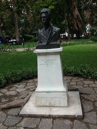 Busto Dr.Sousa Viterbo