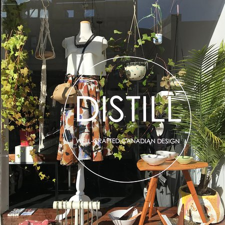 Sunny window display at DISTILL, 96 Downie Street, Stratford.