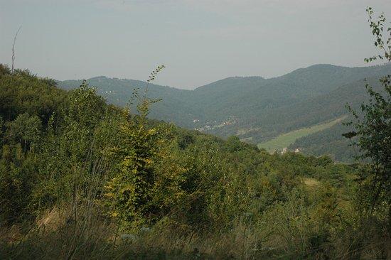 Park Krajobrazowy Beskidu Malego