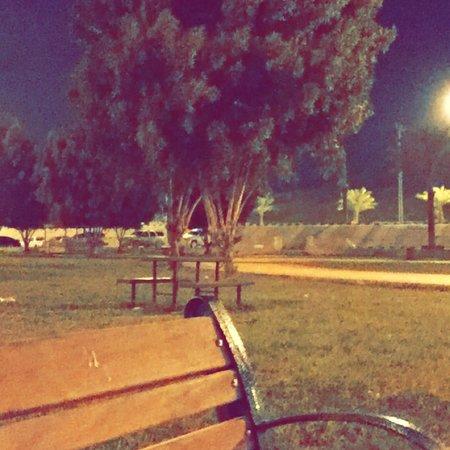 Almajaridah, Saudi Arabia: حديقة التعاون