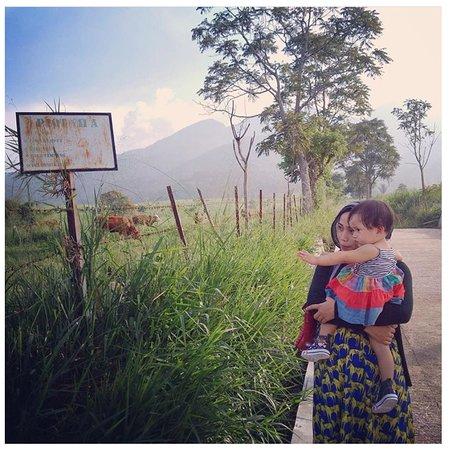 Padang Mengatas照片