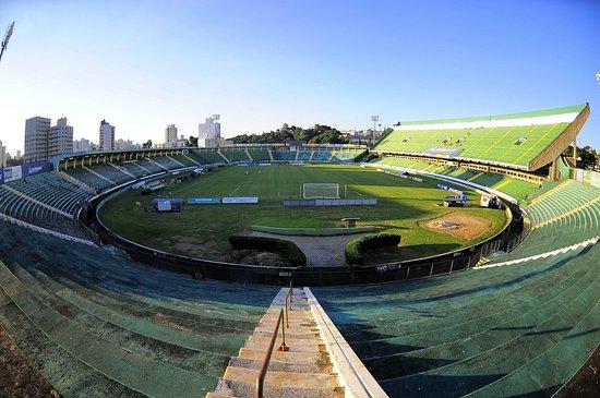 Brinco de Ouro da Princesa stadium