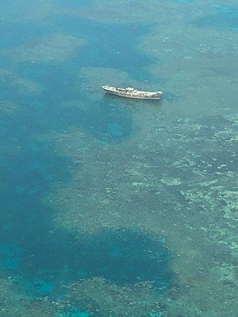Excursión de un día a Lizard Island en avión desde Cairns: Shipwreck from the flight...