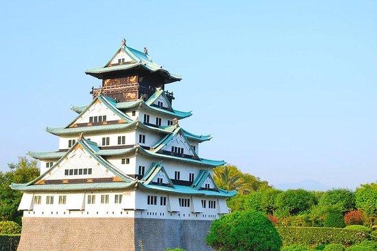Osaka Walking Tour with River Cruise...