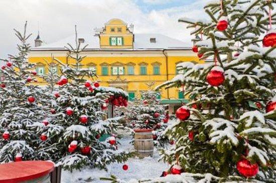 Visite des marchés de Noël au départ...