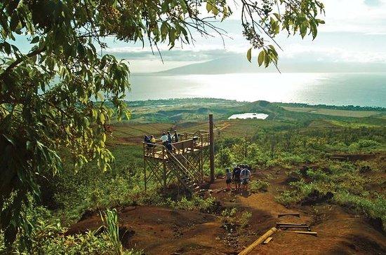 マウイ島のカアナパリ ジップライン アドベンチャー