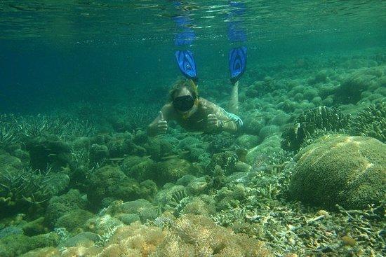 Escapada de un día de buceo a la Isla...