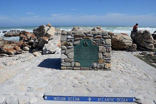 Cape Agulhas tur fra Cape Town