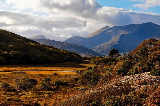 Ring of Kerry Full-Day Tour met gids ...