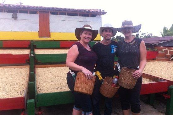 MedellínからのJericóの母ローラーコーヒーツアー