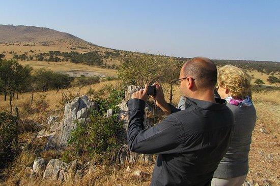 Excursión de todo el día al Serengeti...