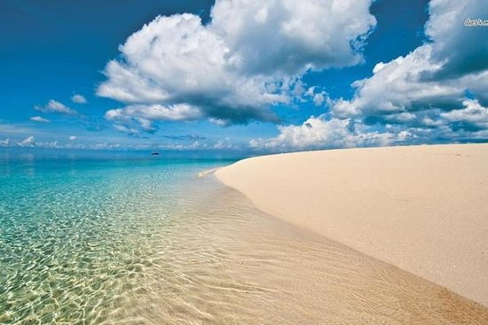 Full-Day Zanzibar Island Tour from...