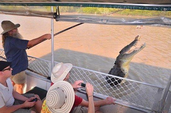 Viagem de um dia ao crocodilo de salto...