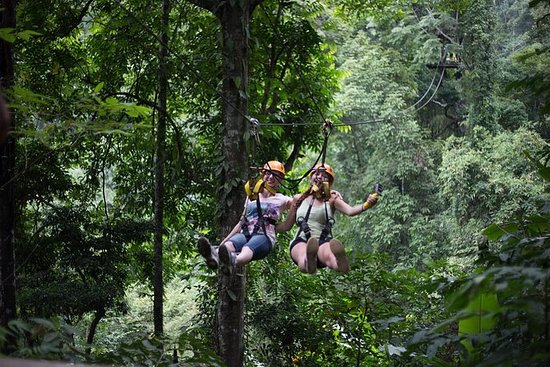 Jungle Ziplining Adventure de Chiang...