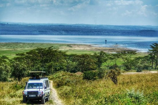 Full-Day Lake Nakuru National Park...