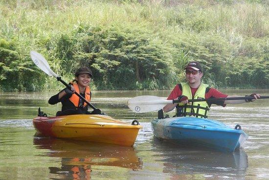 Journée complète de kayak dans la...